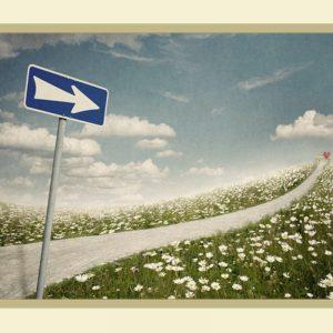 Дорога судьбы